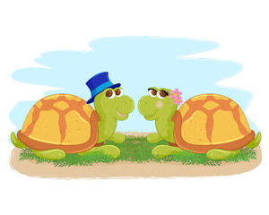 Pair of turtles