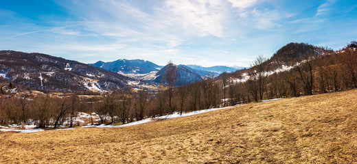panorama of mountainous countryside in springtime. leafless trees and weathered grass on a meadow. spots of snow on the forested hills. gorgeous blue sky with some cirrus clouds