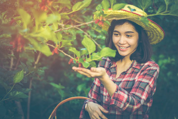 Asian farmer girl smiled proudly as she was the agricultural planting and care of trees in the garden. She wore a hat woven from bamboo and wearing a red shirt with copy space.
