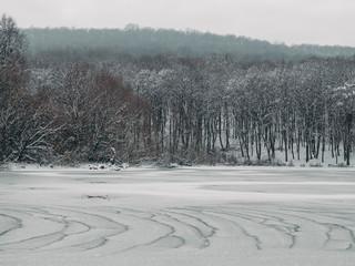 Frozen lake in forest, Landscape.