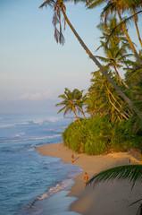 Sunrise on the coast of the Indian Ocean in Sri Lanka