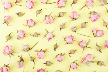 Background made from different rose blossoms on the yellow base