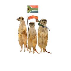 Standing meerkats surikat . Watercolor hand drawn illustration