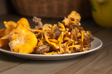close-up view of two types of chanterelles served on a crockery dish over a rustic wooden table