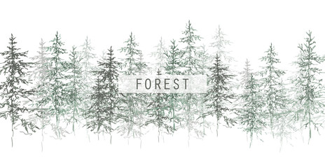 Christmas tree. Coniferous forest. Graphic trees. Misty Christmas trees. Sketch Christmas trees.