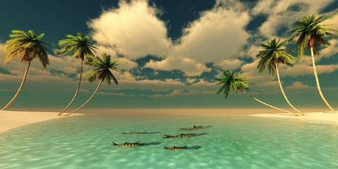 Beautiful beach with palm trees, tropical seascape,