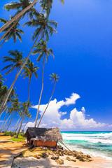wild beautiful beaches of Sri Lanka, Weligama, south of island