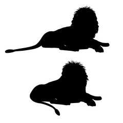 Silhouettes of a lying lion