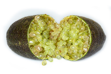 Close-up of Citrus australasica, the Australian finger lime or caviar lime