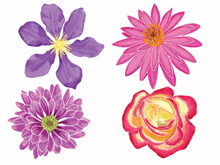 Hand-drawn Watercolor illustration set with flowers