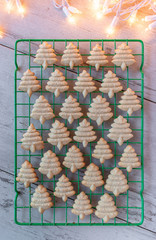 Baked Christmas sugar cookies pressed shapes on baking sheet flat lay