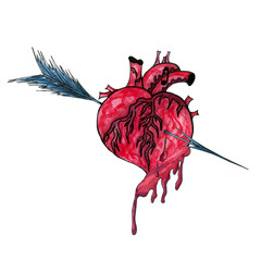 watercolor illustration with bleeding human heart pierced by an arrow.
