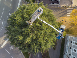 Decoration of a large urban Christmas tree in the city. Workers on the crane install and decorate the Christmas tree with led light strips. View from above. Drone view.
