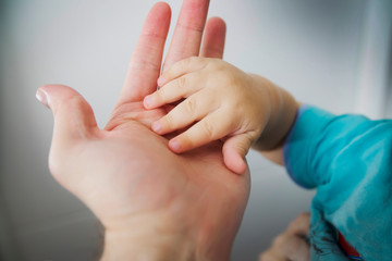 the child's hand in the parent's hand