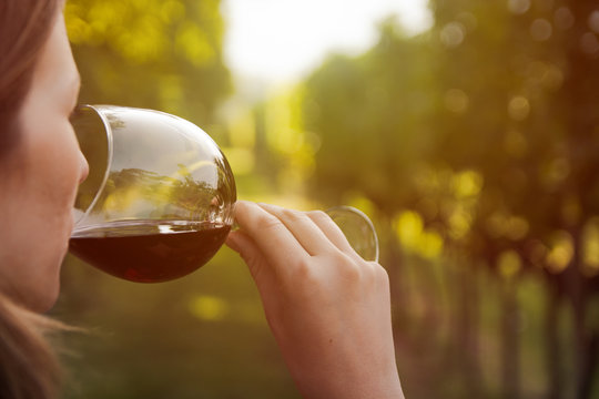 close up of a young woman drinking red wine from a glass in a vineyard