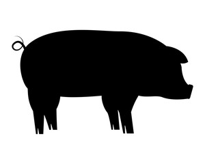 silhouette pig on white background