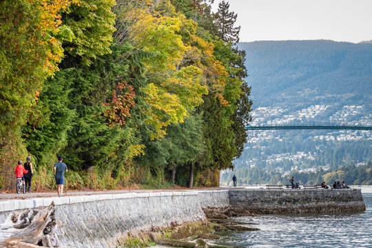Along the seawall in Stanley Park, downtown Vancouver, with Lions Gate Bridge in the background.