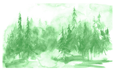 Watercolor coniferous forest, fir, pine, cedar. Vintage illustration of green on white isolated background. Watercolor countryside landscape. Abstract splash of paint.