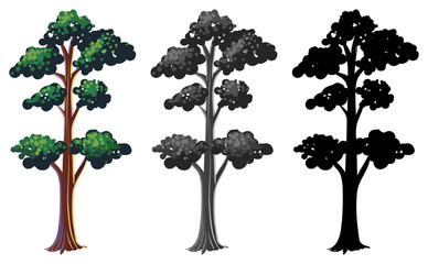 Set of isolated tree