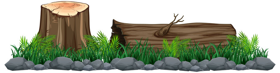 Wall Mural - Isolated tree stump on white background
