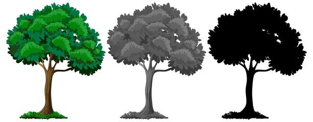 Set of different tree design