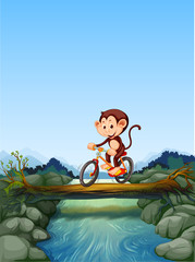 Monkey riding bicycle crossing river