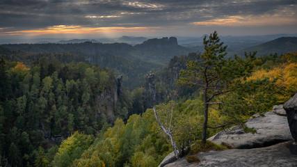 Trees and Rocks - Bäume und Felsen