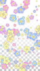Vector Realistic Colorful Petals Falling on Transparent Background.  Spring Romantic Flowers Illustration. Flying Petals. Sakura Spa Design. Blossom Confetti. Design Elements for Wedding Decoration.