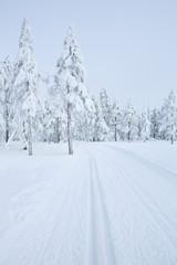 Fototapete - Cross-country trail through a frozen landscape in Norway