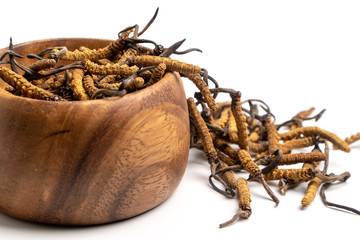 Close up Cordycep sinensis (CHONG CAO) or mushroom cordyceps on Wooden bowl on isolated background. Medicinal properties in the treatment of diseases. National organic medicine. Wall mural