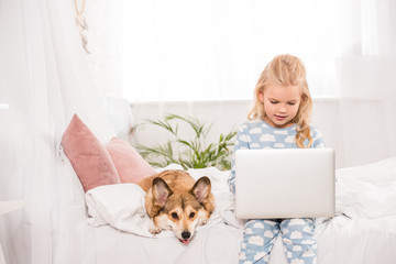 cute child sitting in bed with corgi dog and using laptop at home