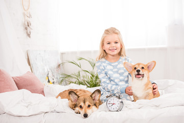 smiling child sitting on bed with pembroke welsh corgi dogs and alarm clock while looking at camera