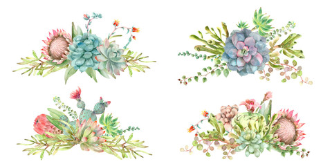 Succulents bouquet watercolor
