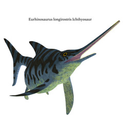 Eurhinosaurus Ichthyosaur Reptile on White with Font -Eurhinosaurus was a carnivorous Ichthyosaur reptile that lived in Europe during the Jurassic Period.