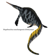 Hupehsuchus Reptile Tail with Font -Hupehsuchus was an Ichthyosaur marine reptile that lived in China during the Triassic Period.