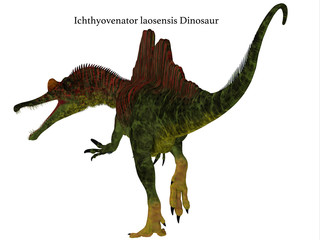 Ichthyovenator Dinosaur Tail with Font - Ichthyovenator was a carnivorous theropod dinosaur that lived in Laos, Asia during the Cretaceous Period.