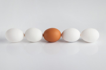 the theme of leadership, individuality; uniqueness, work, teamwork. Brown egg in the center of several whites..