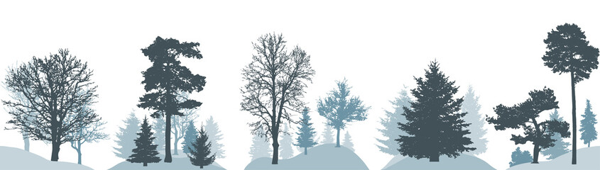 Set of winter forest, silhouette of different trees. Vector illustration.
