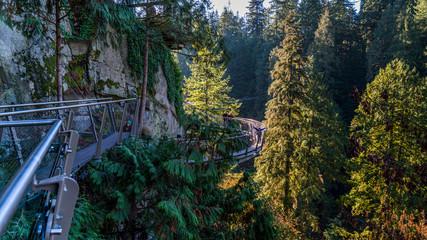 Areial view of Capilano Suspension Bridge, Vancouver. Beautiful British Columbia, Canada.
