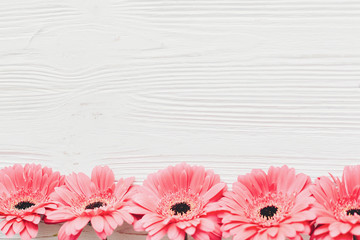 Pink gerbera on white  wooden background,  flat lay with space for text. Tender Floral greeting card mockup. Wedding invitation, happy mother day concept. Flowers border