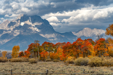 Red, yellow, and orange leaves changing with mountain in background