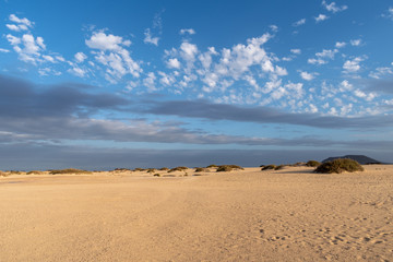 Printed roller blinds Desert Corralejo Natural Park, Fuerteventura, Canary