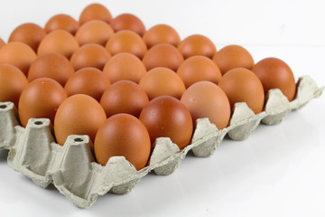 Group of fresh eggs in pater tray on white background