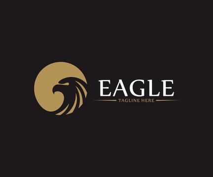 Eagle Bird logo design vector concept, Bird logo template