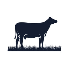 cow silhouette vector icon. black angus vector illustration