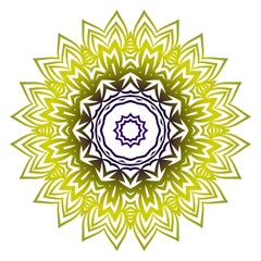 Indian floral mandala pattern.Vector Henna tattoo style. Can be used for textile, greeting card, coloring book, phone case print.
