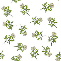 Seamless pattern with chinese white peony ornamental plant.