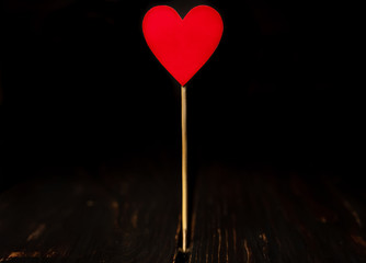 Red paper hearts on sticks Against the background of the old tree, Valentine's Day