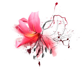 Beautiful pink Lily flower in spring nature, with elements of sketch and spray paint. Magical colorful artistic image of the tenderness of nature, spring flower Wallpaper. Watercolor illustration