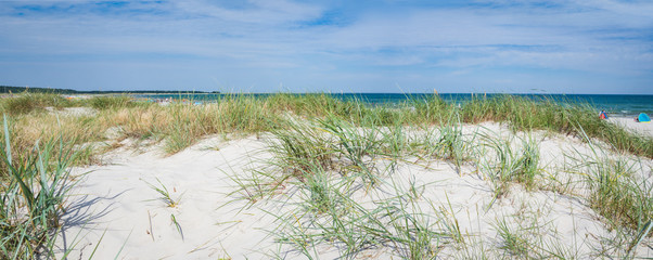 Panorama of sandy dunes on a beach of Baltic Sea